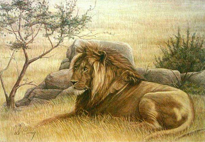 Painting by Dennis Curry: Golden Lion